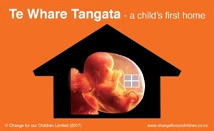 Te Whare Tangata - a child's first home. Source: Change for our Children Limited (2017).